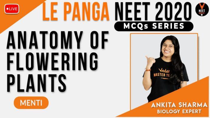 Anatomy of Flowering Plants Class 11 | NEET MCQs Series | NEET Biology | NEET 2020 | Ankita Sharma