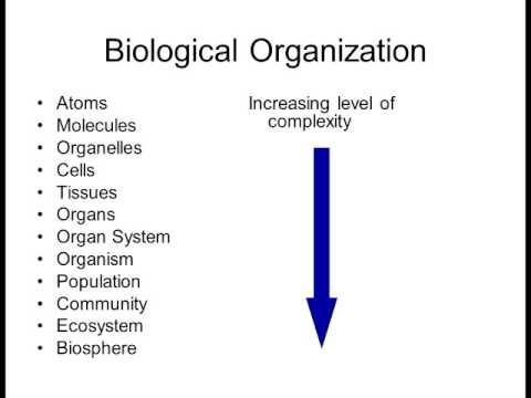 Biology 1010 Lecture 1 Intro to Biology