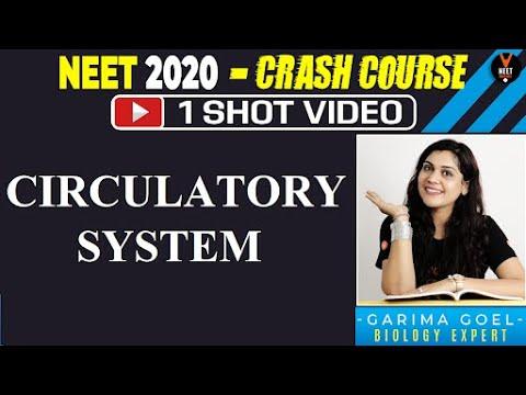 Circulatory System in One Shot | 11th Biology | NEET 2020 Preparation | NEET Biology | Garima Goel