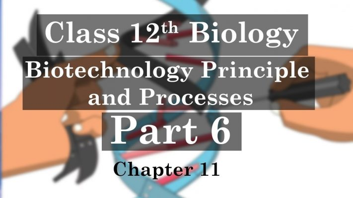 12th Class Biology - Chapter 11| Biotechnology Principles and Processes (Part 6)