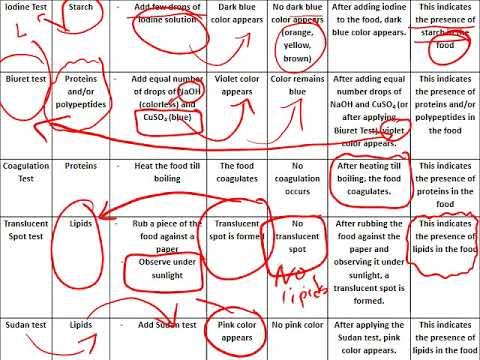 Biology Grade 9 Semester 2 Trial 2 Exam Review