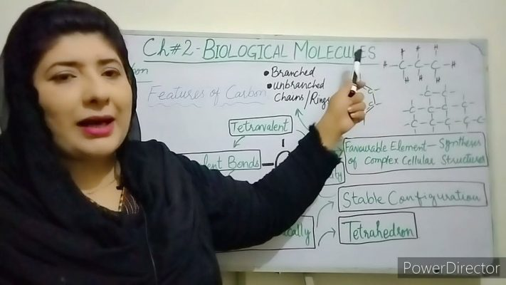 Importance of Carbon 11 Class Biology Chapter 2 Biological Molecules   - 1st Year Biology Chapter 2