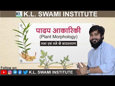 #Plant  Morphology #BOTANY || #BIOLOGY k.l.swami sir || #SCIENCE # GROUP -D #SSC -GD  # PATWAR