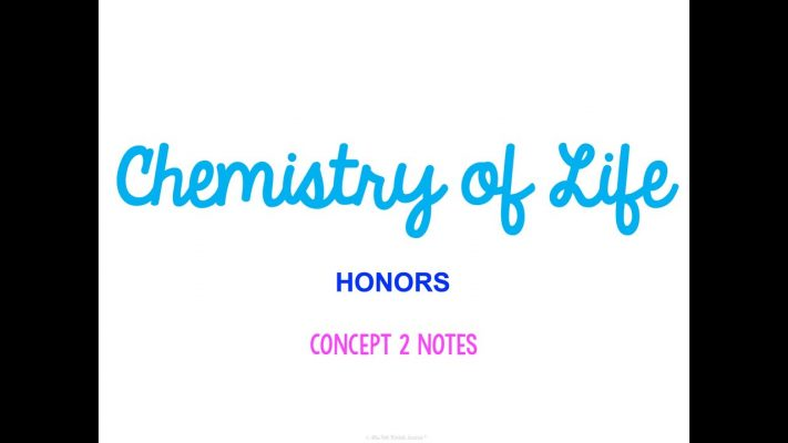 Unit 1 Biology Basics HONORS Concept 2 Notes *UPDATED*