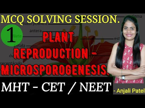 Class XII - Biology- MHT - CET / NEET  MCQ Solving Session - Plant reproduction- Microsporogenesis