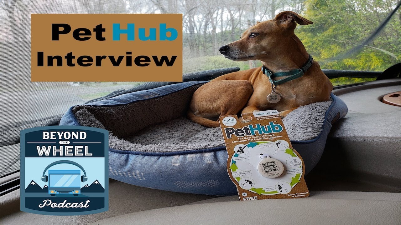 Get to know PetHub and How Their Services Can Help find Lost Pets, Interview with COO Lorien Clemens