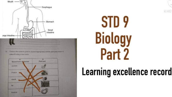 STD 9|BIOLOGY|PART 2|ACTIVITY CARD |LEARNING EXCELLENCE RECORD