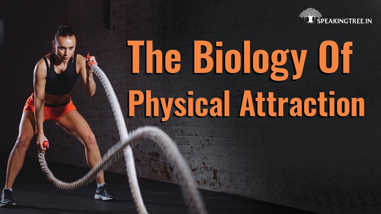 The Biology Of Physical Attraction